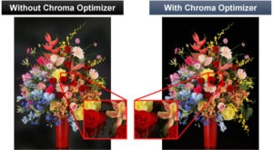 Chroma Optimizer w ploterach Canon PRO